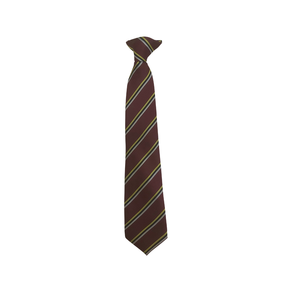 Kings School Tie